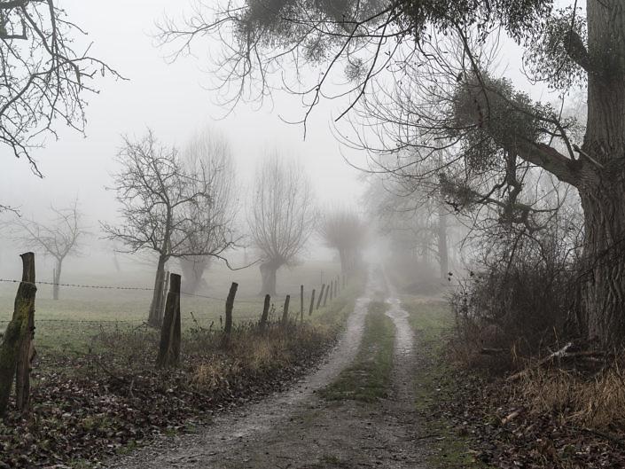 Kämpe im Nebel 2017