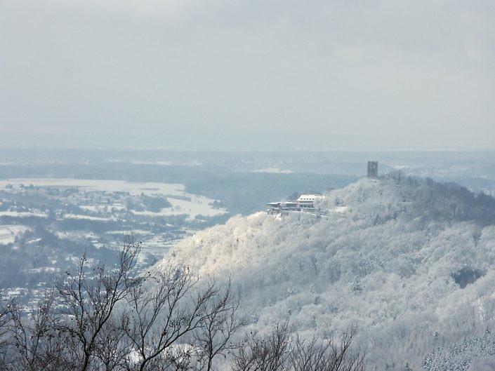 Siebengebirge 2010