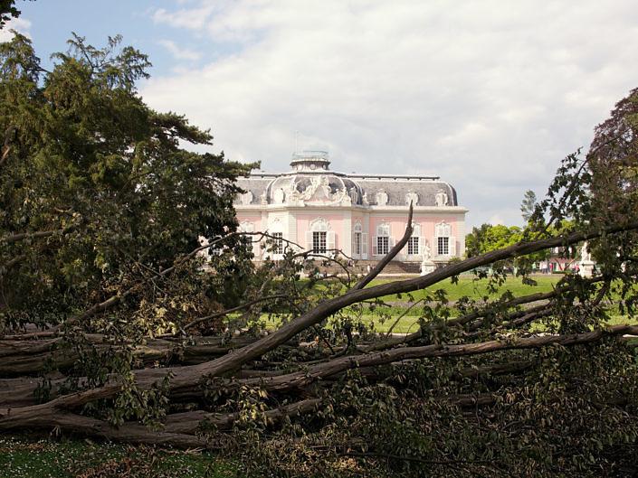 Benrath nach dem Sturm 2014