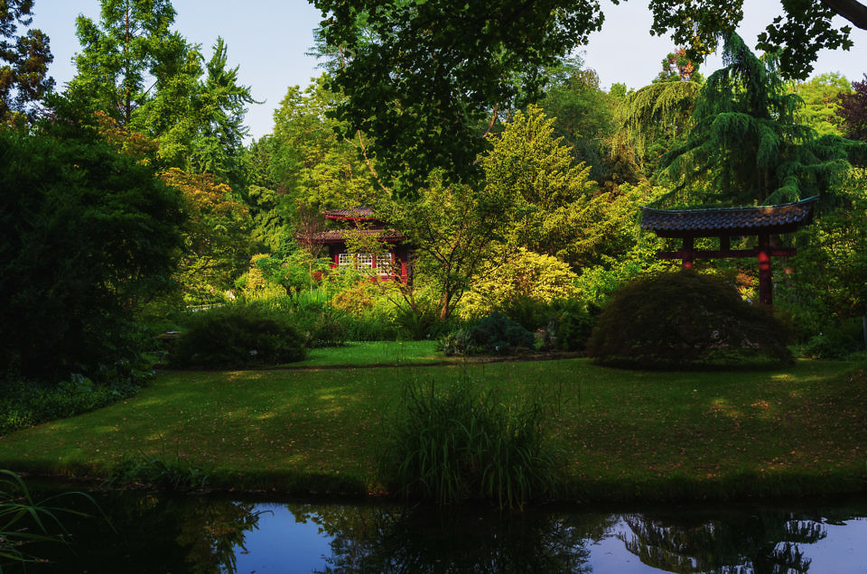 "New Gallery ""Japanese Garden"""